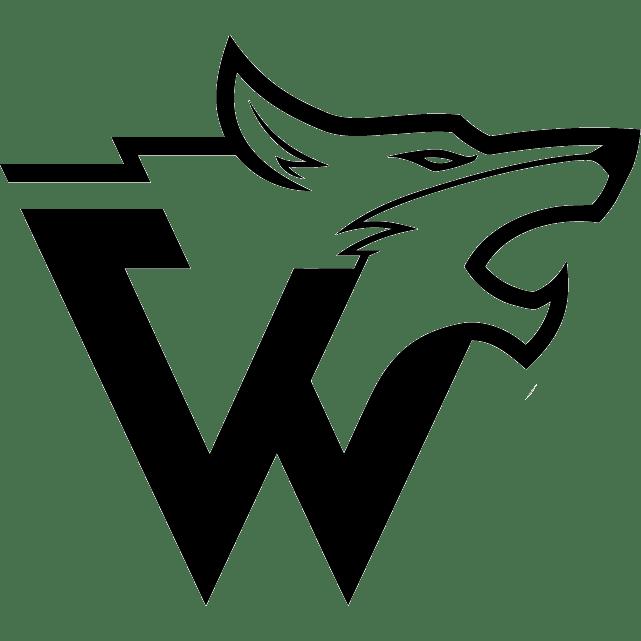 Logo-Wolff-GmbH Online Videokurse
